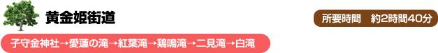 黄金姫街道 子守金神社→愛蓮の滝→紅葉滝→鶏鳴滝→二見滝→白滝