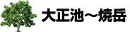 大正池~焼岳