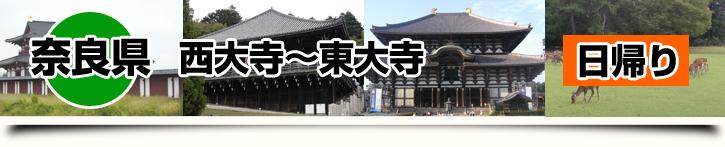 奈良県-西大寺~東大寺 日帰り