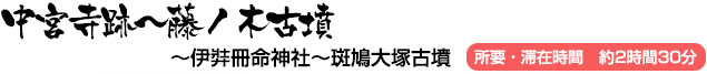 中宮寺跡~藤ノ木古墳(~伊弉冊命神社~斑鳩大塚古墳)