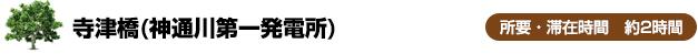 寺津橋(神通川第一発電所)