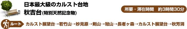 日本最大級のカルスト台地-秋吉台(特別天然記念物)