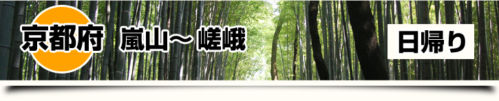 京都府-嵐山~嵯峨 日帰り