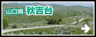 山口県 秋吉台