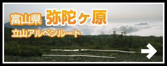 富山県 弥陀ヶ原-立山アルペンルート